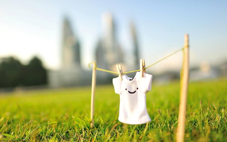 Как вывести плесень с одежды в домашних условиях?