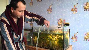Чистка аквариума