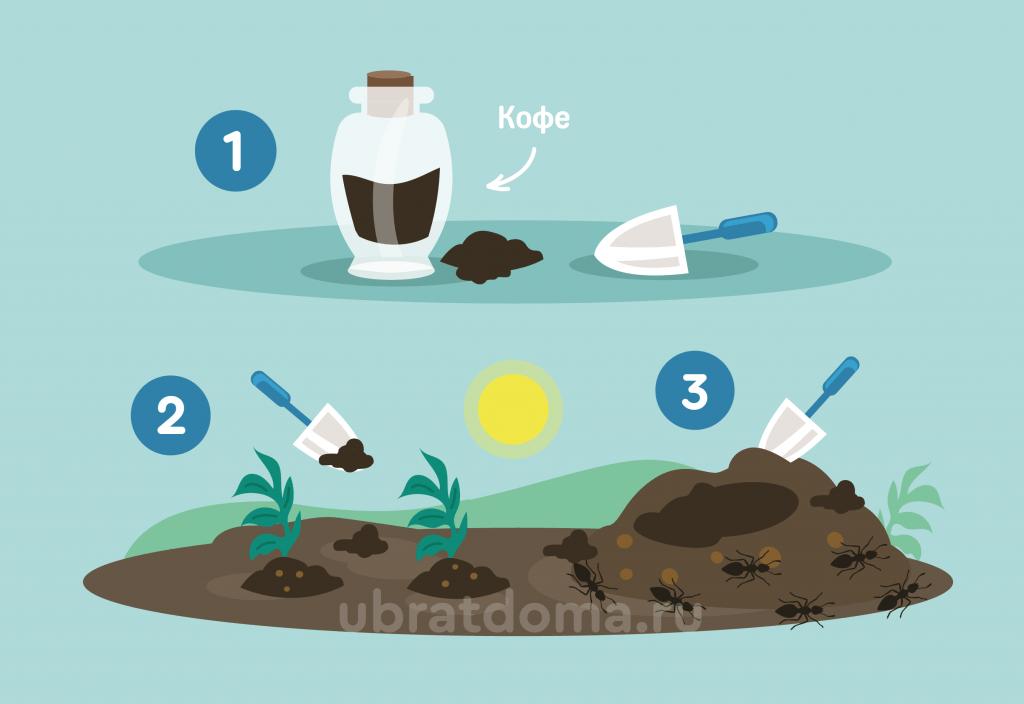 Как кофе влияет на мурашек?