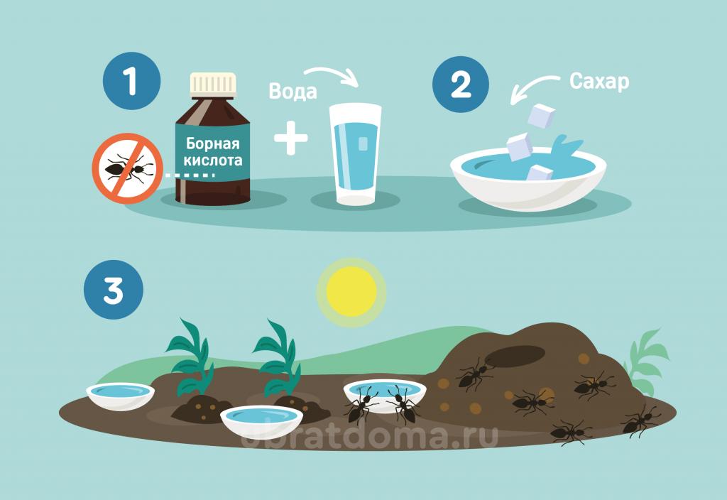 Как правильно приготовить раствор с борной кислоты, воды и сахара?
