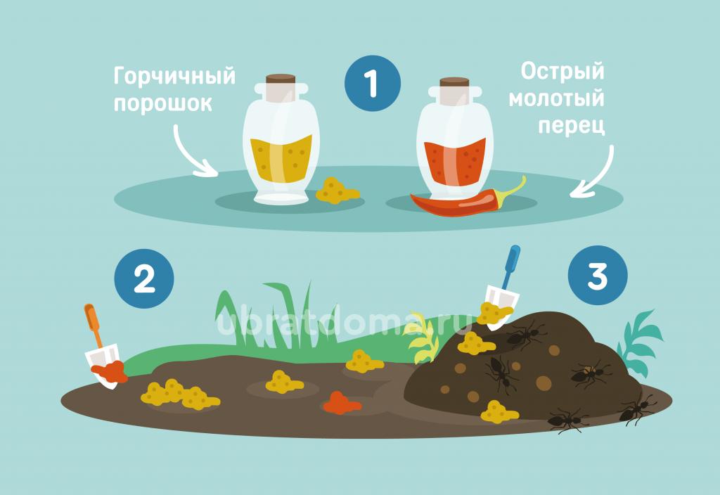 Как применять горчицу или горчичный порошок для борьбы с насекомыми?