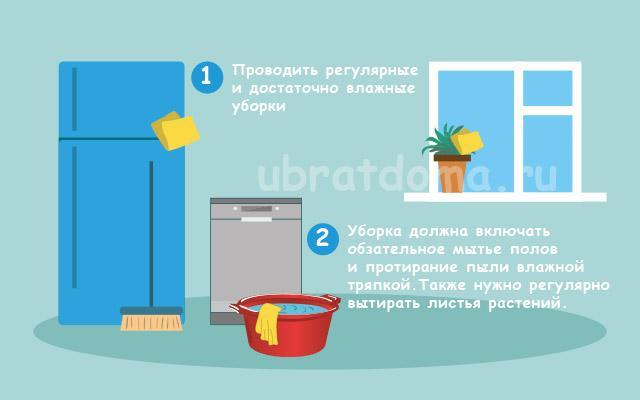 Проводите регулярные влажные уборки