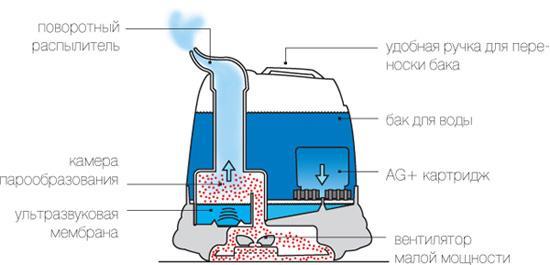 Как почистить увлажнитель воздуха от накипи, плесени и налета?