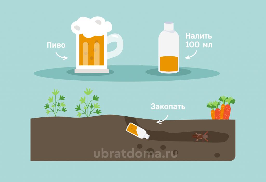 Ловушка из банки с пивом